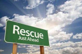 Rescue - 350