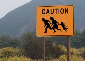 Illegal Immigration 325
